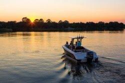 2020 - Robalo Boats - R242EX