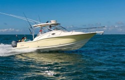 2009 - Scout Boats - 295 Abaco