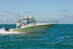 2011 - Scout Boats - 295 Abaco Series