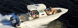 2017 - Scout Boats - 275 LXF