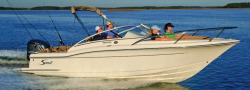 2018 - Scout Boats - 225 Dorado