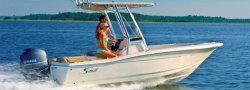 2020 - Scout Boats - 195 Sportfish