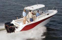 2010 - Sea Fox - 256 WA