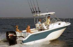 2010 - Sea Fox - 236 WA