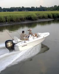 2011 - Sea Fox - 160 CC