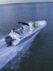 2014 - Sea Fox - 236 Traveler