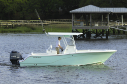2014 - Sea Fox - 246 Commander