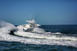 2016 - Sea Hunter Boats - Tournament 33