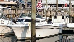 1985 - Grady-White Boats - 247 Offshore Pro