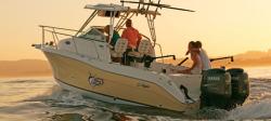 2009 - Seaswirl Boats - 2605 Walk Around IO
