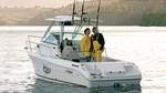 2009 - Seaswirl Boats - 2101 Walk Around IO
