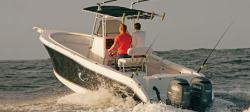 2009 - Seaswirl Boats - 2601 Center Console OB