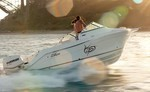 2010 - Seaswirl Boats - 2101 Dual Console OB