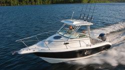 2011 - Seaswirl Boats - 2301 Walk Around OB