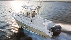 2011 - Seaswirl Boats - 2101 Walk Around OB