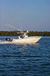 2014 - Sea Vee Boats - 290