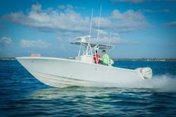 2020 - Sea Vee Boats - 290