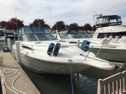 1989 Sea Ray Boats 280 SUNDANCER Harrison Township MI