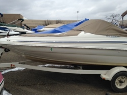 1999 Sea Ray Boats 190SD Waterford  MI
