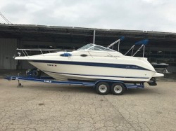 1995 Sea Ray Boats 250 SUNDANCER Round Lake IL