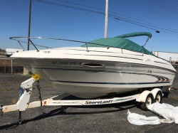 1998 Sea Ray Boats 215 EC Round Lake IL