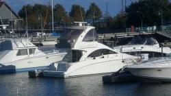 2007 Sea Ray Boats 36 SEDAN BRIDGE Round Lake IL