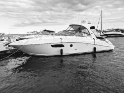 2011 Sea Ray Boats 370 SUNDANCER Walworth WI