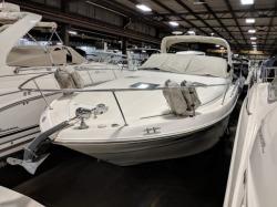 1999 Sea Ray Boats 310 SUNDANCER Walworth WI