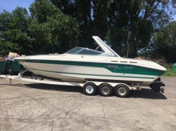 1993 Sea Ray Boats 310SS Pewaukee WI