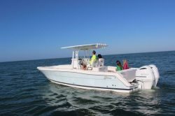 2019 - Stamas Yachts - 317 Tarpon