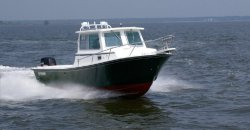 2012 - Steiger Craft Boats - 255 DV Miami