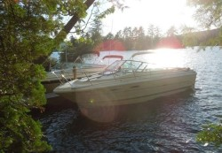 1985 - Sea Ray Boats - 210 Cuddy Cruiser