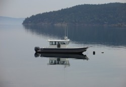 1981 - Fiberform Boats - 2010 Sounder