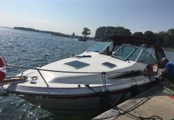 1990 - Sea Ray Boats - 220 Sundancer