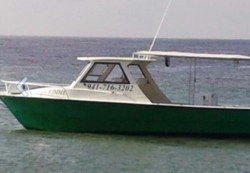 1989 - Albin Boats - 46 Custom Convertible