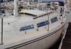1977 - Capri - Capri DS 22 C
