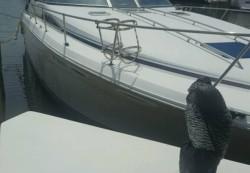 1990 - Sea Ray Boats - 220 Sundancer