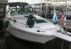 1996 - Sea Ray Boats - 270 Sundancer