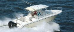 2009 - Triton Boats - 301 XD