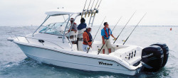 2009 - Triton Boats - 2690 WA