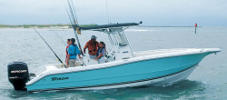 2009 - Triton Boats - 2690 CC