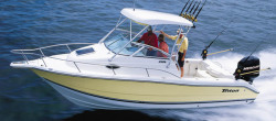 2009 - Triton Boats - 2486 WA