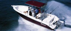 2009 - Triton Boats - 2486 CC