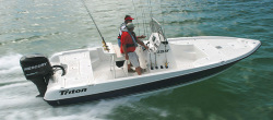 2010 - Triton Boats - 220 LTS
