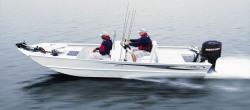 2010 - Triton Boats - 2070 CC