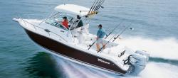 Triton Boats 2690 WA Walkaround Boat