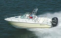 2008 - Triton Boats - 225 WA