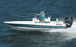 2008 - Triton Boats - 220 LTS