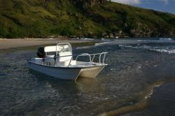 2010 - Twin Vee Boats - 17 Classic