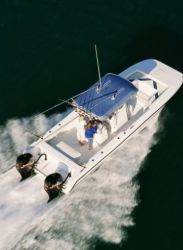 2010 - Twin Vee Boats - 29 Ocean Cat